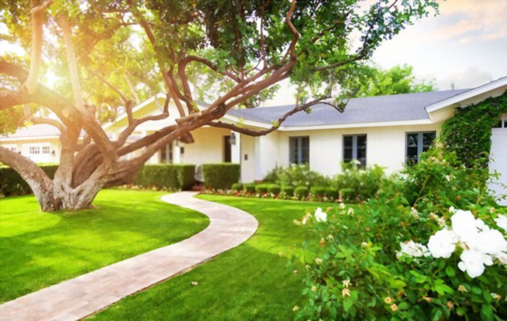 How to Increase Home Value by Adding Trees