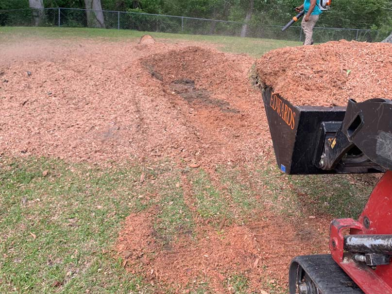 land clearing professionals
